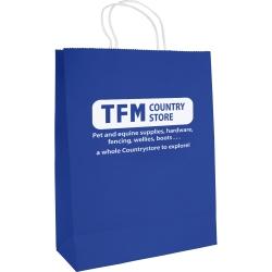 Large Printed Paper Gift Bag
