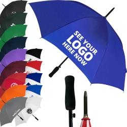 Budget Automatic Walking Umbrella