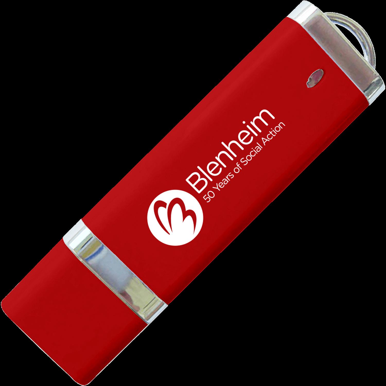 Paypal Printed USB Memory Stick