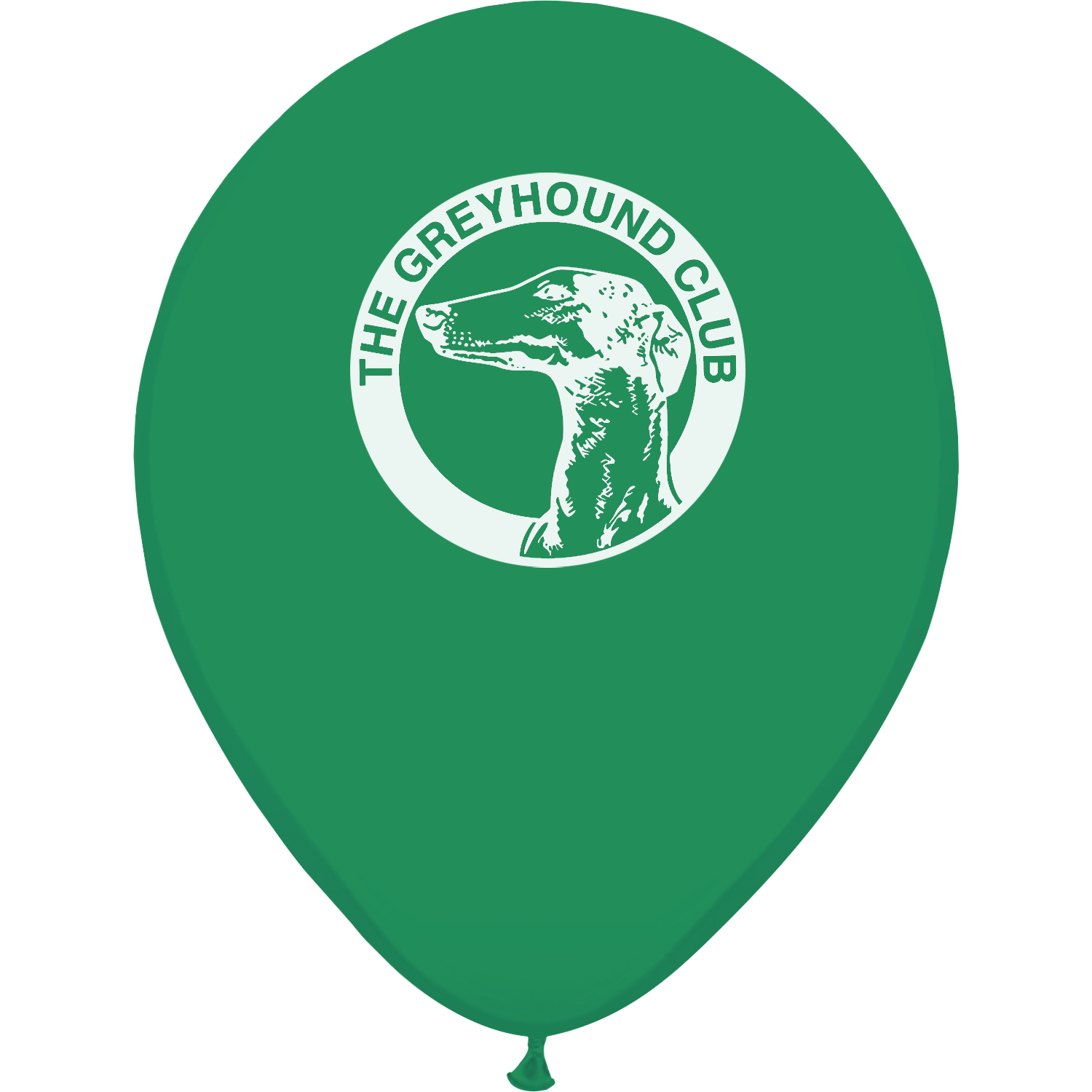 Printed Balloons - 12 inch
