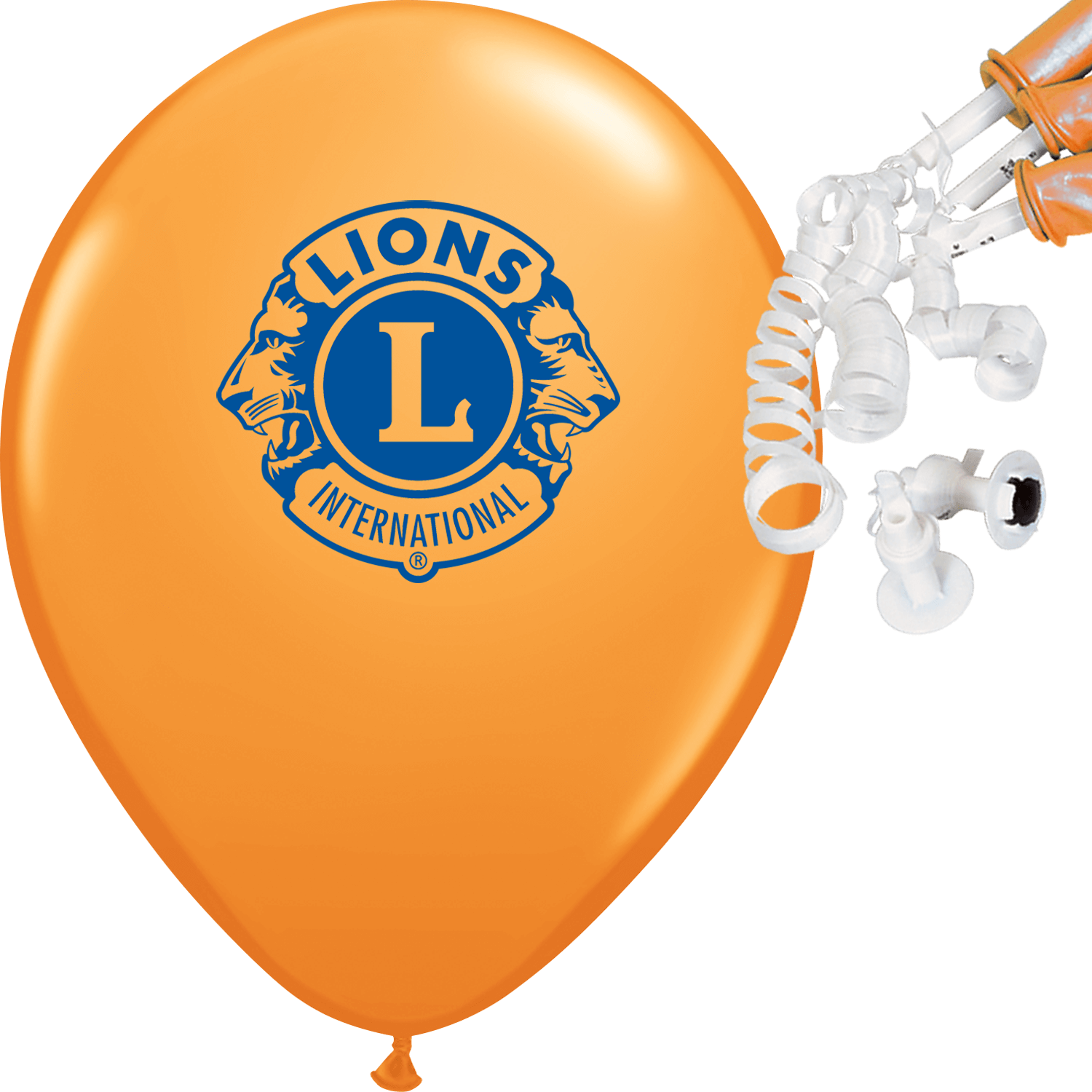 Printed Balloons with Valves & Ribbons