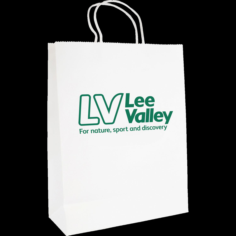 Large Printed Paper Bag