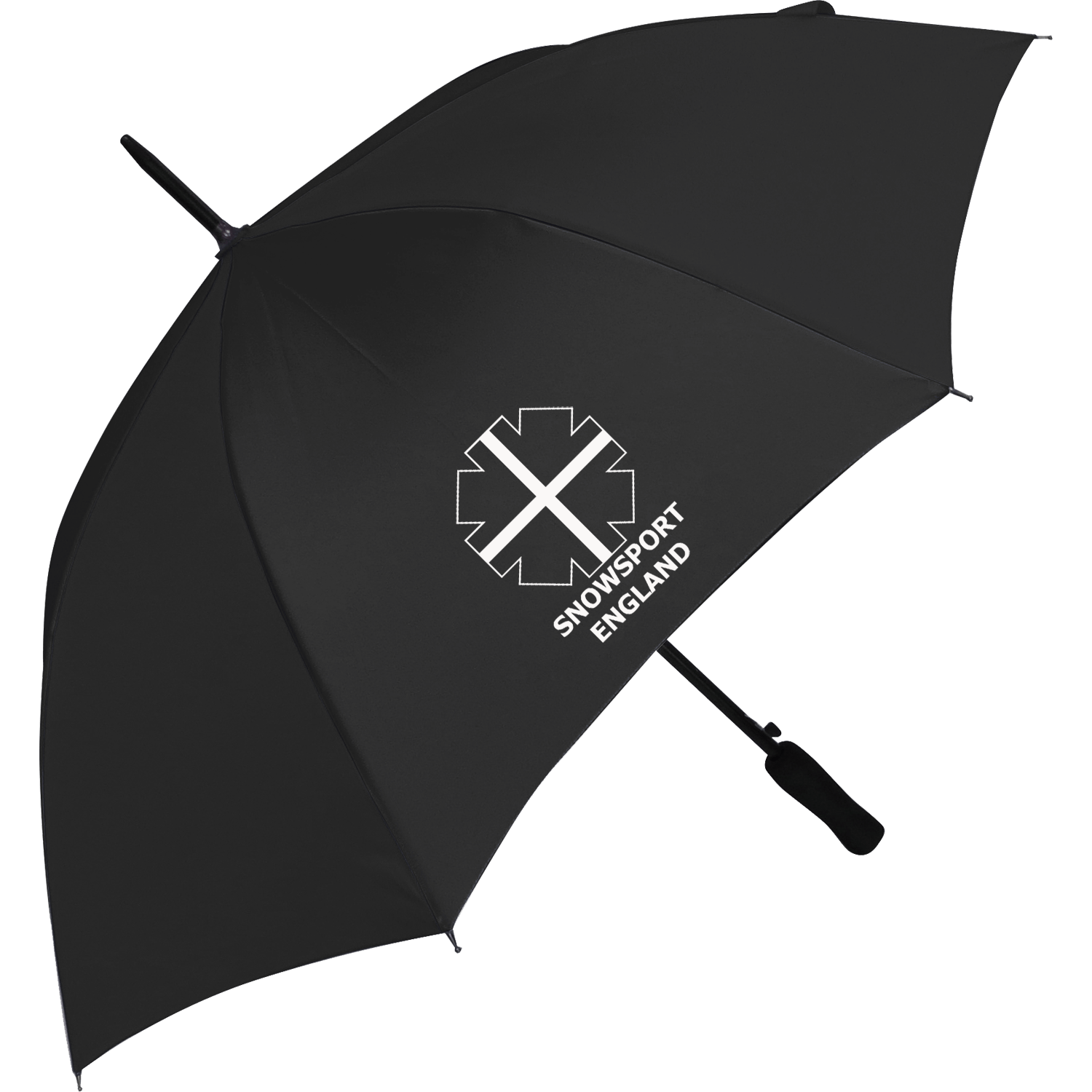 Budget Walking Umbrella