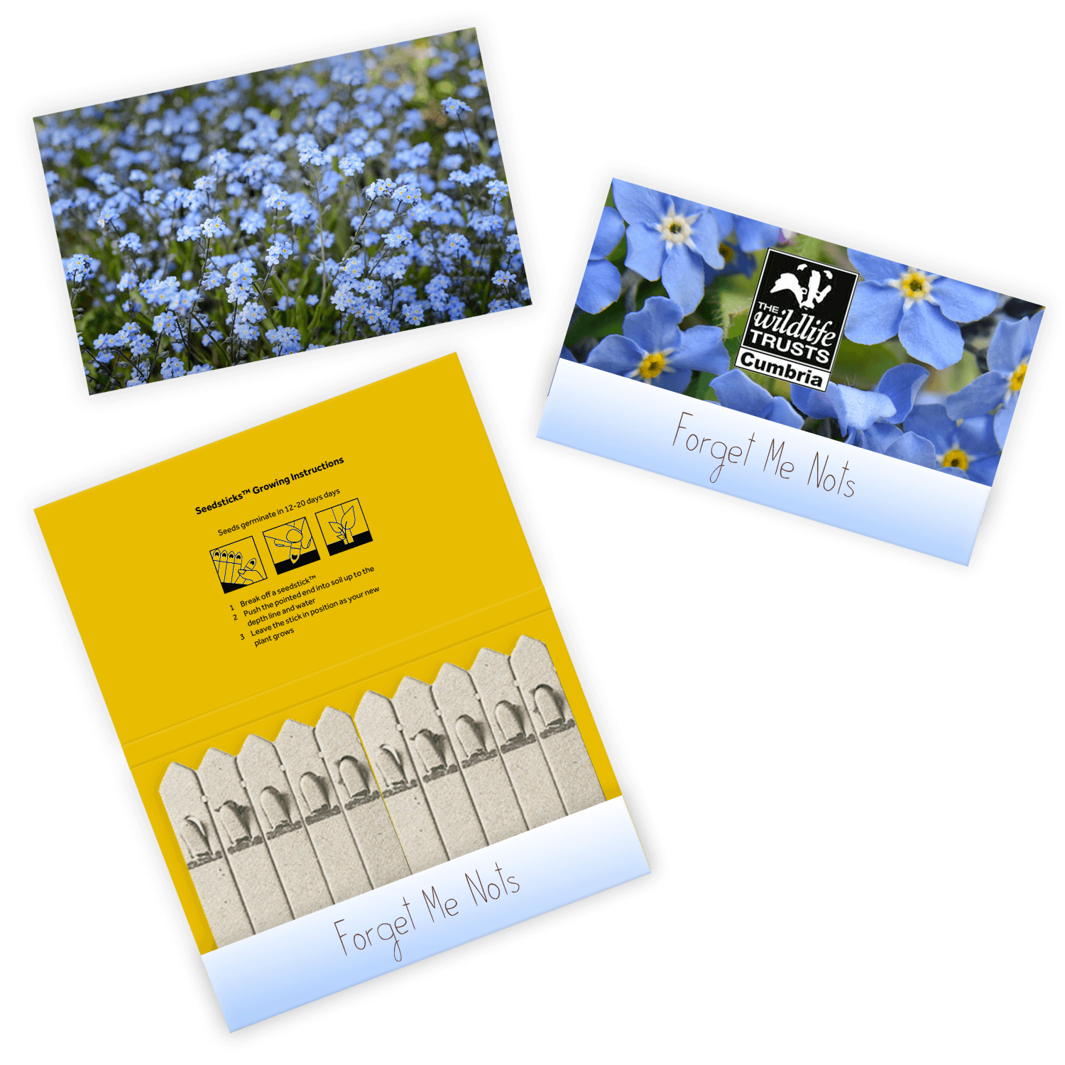 Promotional 10 Stick Seedstick - Flowers