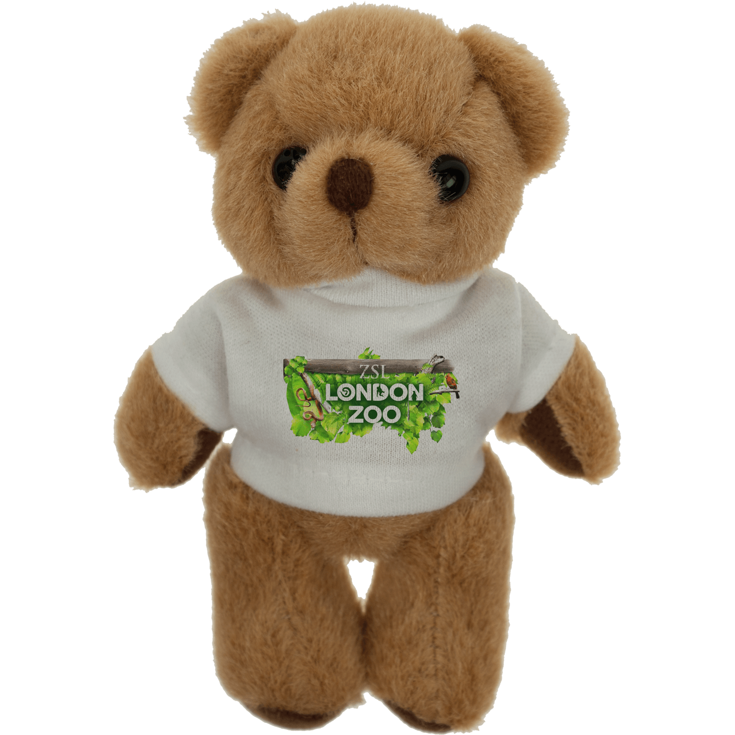 Baby Bear - 125mm with T-Shirt
